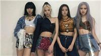 Cổ phiếu YG tăng chóng mặt nhờ màn tái xuất 'How You Like That' của Blackpink