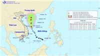 Tin mới nhất: Áp thấp nhiệt đới có thể mạnh lên thành bão số 2giật cấp 10