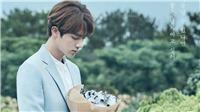 Jin BTS khoe giọng ngọt ngào não lòng trong ca khúc lãng mạn thập niên 90