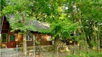Đắm mình với thiên nhiên bốn mùa tại Đông Thế