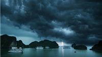 MỚI NHẤT: Bão số 5 đã suy yếu nhanh thành áp thấp nhiệt đới