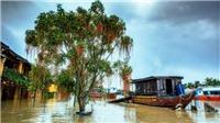 Bão số 6 - siêu bão Mangkhut giật trên cấp 17, báo động sông Hồng xuất hiện lũ lớn từ 2-5m