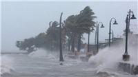 Áp thấp nhiệt đới giật cấp 9 gần Biển Đông khả năng mạnh lên thành bão số 9