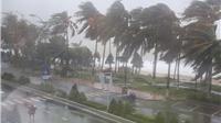 Bão số 9 tiếp tục mạnh lên giật cấp 12, biển động mạnh sóng cao 6 mét
