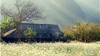 Dự báo thời tiết 14/3: Bắc Bộ giảm mưa trời hửng nắng, Nam Bộ tiếp tục nắng nóng