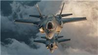 Máy bay chiến đấu đâm phải chim, quân đội Mỹ thiệt hại hàng trăm triệu USD