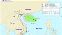 Vùng áp thấp trên biển Đông khả năng mạnh thành bão ảnh hưởng trực tiếp đến Bắc Bộ