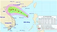 Tin bão: Vùng áp thấp trên biển Đông đã mạnh lên thành áp thấp nhiệt đới