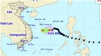 Bão số 8 hiện đã suy yếu thành áp thấp nhiệt đới