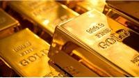 Giá vàng hôm nay 18/8 cập nhật diễn biến mới nhất trên thị trường