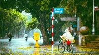 Dự báo thời tiết: Bắc Bộ ngày nắng đêm mưa dông, Nam Bộ mưa lớn