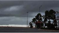 Tin bão khẩn cấp cơn bão số 9: Bão giật cấp 15 đổ bộ đất liền