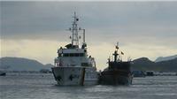 Đưa 11 ngư dân tàu cá Bình Định BĐ 98658 TS gặp nạn về đất liền an toàn