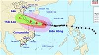 Bão số 13 đổ bộ từ Hà Tĩnh đến Quảng Nam ngày 15/11