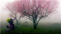 Không khí lạnh tràn về miền Bắc, Hà Nội lạnh 7 độ C