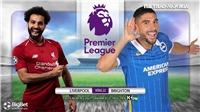 Soi kèo nhà cái Liverpool vs Brighton, K+, K+PM trực tiếp bóng đá Anh hôm nay