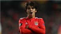 Chuyển nhượng MU: Benfica bác thỏa thuận với Atletico, MU nhiều hy vọng ở vụ Joao Felix