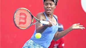 WTA Elite Trophy: Venus, Pliskova vào bán kết