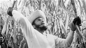 Fidel Castro - Nghề nghiệp ngôn từ: 'Học cách làm việc cũng quan trọng như học cách nghỉ ngơi'