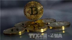 Tiền ảo 'rơi tự do', có thể mất hơn 20% giá trị