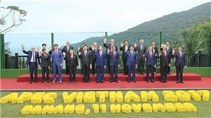 VIDEO: Chủ tịch nước Trần Đại Quang chụp ảnh chung với các nhà lãnh đạo APEC