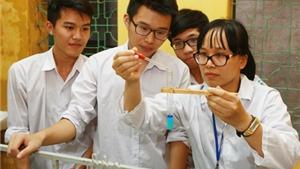 Hơn 4.400 thí sinh thi chọn học sinh giỏi THPT quốc gia
