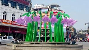 Hoa ở Quảng trường Đông Kinh Nghĩa Thục: Không chỉ chuyện bông hoa ở quảng trường