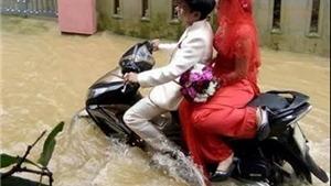 Từ 'Mùa lụt nước lũ bắt cá giữa đường' đến 'đám cưới chạy lũ'