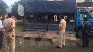 Bắt xe chở gỗ lậu 'ngụy trang' xe đưa tang trên quốc lộ 1A