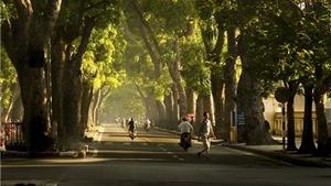 Thời tiết đẹp: Hà Nội nắng ấm, TP HCM mát mẻ, tạnh ráo