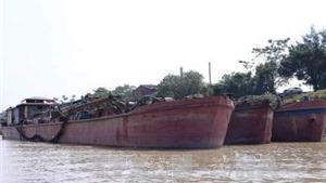 Bắt giữ 14 tàu khai thác, vận chuyển cát trái phép trên sông Hồng
