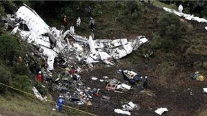 Máy bay chở cầu thủ Brazil: Tiết kiệm 1 tiếng 'đổ xăng', chết 71 người