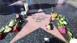 """Fan """"ngẫu hứng"""" làm sao tôn vinh Carrie Fisher trên Đại lộ Danh tiếng Hollywood"""
