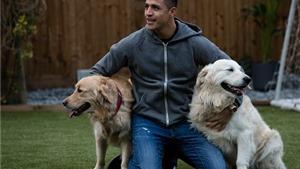 CĐV Arsenal nghĩ ra ý tưởng ĐỘC để thuyết phục Sanchez ở lại