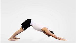 10 Bài tập Yoga chữa đau lưng nhanh nhất