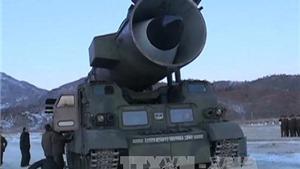 Thủ tướng Nhật: Vụ phóng tên lửa của Triều Tiên là 'không thể dung thứ'