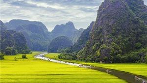 'Kong: Skull Island': Người Việt Nam ngất ngây vì Hạ Long, Ninh Bình