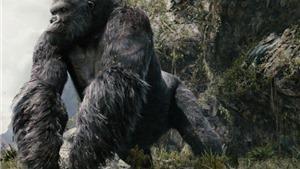 84 tuổi, King Kong vẫn lôi cuốn toàn cầu