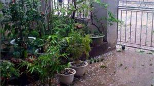 Mưa đá, gió lốc gây nhiều thiệt hại tại Điện Biên