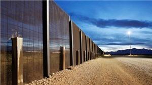 Thế giới bất an, ồ ạt xây tường biên giới