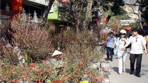 Trăm năm chợ hoa cổ Hàng Lược