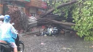 Thót tim với những pha hút chết trong cơn dông ở Hà Nội