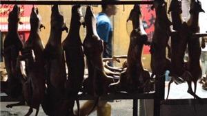 Xô xát trước lễ hội thịt chó lớn nhất Trung Quốc