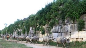Cày bừa phát hiện cổ vật nghìn năm trong khu vực Thành nhà Hồ