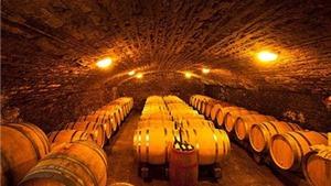 Quê hương rượu vang Champagne và Bourgogne cũng thành di sản văn hóa thế giới