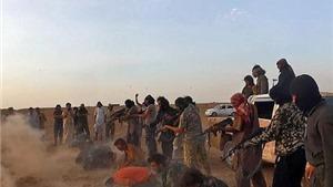 Cất mẻ lưới, tóm sống 431 thành viên IS