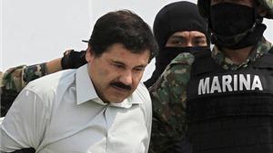 Nghi vấn Mexico cố tình để sổng El Chapo