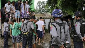 Cơn khát gỗ Trung Quốc đè nặng lên các cánh rừng Myanmar
