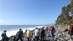 10 ngày tìm kiếm MH370 trên đảo Reunion thành công cốc
