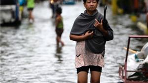 Tàn phá xong Philippines, bão Goni tràn vào miền Nam Nhật Bản